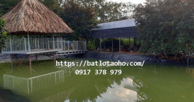 Bạt Lót Hồ Tưới Nước Bình Phước, Bạt Nhựa HDPE Lót Bờ Ao Bình Phước